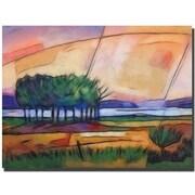 "Trademark Global Adam Kadmos ""Colorful Evening"" Canvas Art, 24"" x 32"""