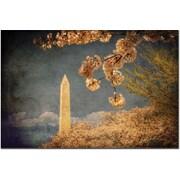 "Trademark Global Lois Bryan ""The Washington Monument"" Canvas Art, 16"" x 24"""