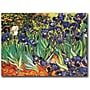 Trademark Global Vincent Van Gogh irises Saint-Remy Canvas