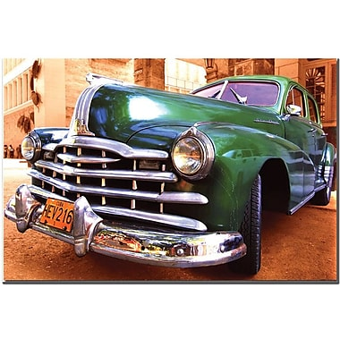 Trademark Global in.Green Beautyin. Canvas Art, 16in. x 24in.
