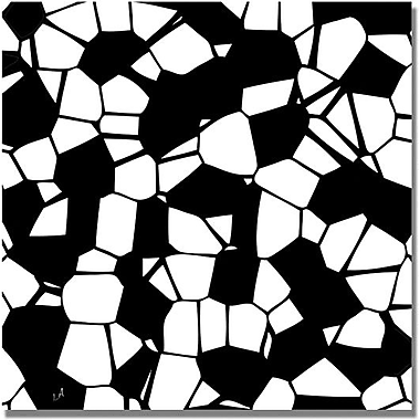 Trademark Global in.Crystals of Black and Whitein. Canvas Art, 18in. x 18in.
