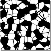 "Trademark Global ""Crystals of Black and White"" Canvas Art, 18"" x 18"""