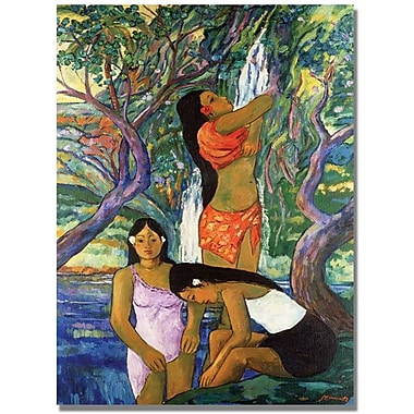 Trademark Global Manor Shadian in.Hana Waterfallin. Canvas Art, 47in. x 30in.