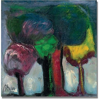 Trademark Global Boyer in.Bosque de Nieblain. Canvas Art, 18in. x 18in.