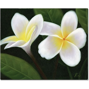 Trademark Global in.Hawaiian Lei Flowersin. Canvas Arts