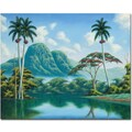 Trademark Global Douglas in.Claridadin. Canvas Art, 26in. x 32in.
