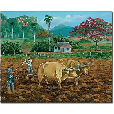 Trademark Global Douglas in.Coneccion Natural IIin. Canvas Art, 26in. x 32in.