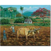 "Trademark Global Douglas ""Coneccion Natural II"" Canvas Art, 26"" x 32"""