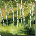 Trademark Global Michelle Calkins in.Birch Treesin. Canvas Art, 24in. x 24in.