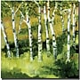 Trademark Global Michelle Calkins Birch Trees Canvas Art,