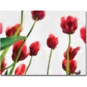 Trademark Global Michelle Calkins Red Tulips from Bottom Up II Canvas Art, 18 x 24