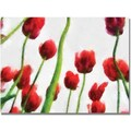 Trademark Global Michelle Calkins in.Red Tulips from Bottom Up IIIin. Canvas Art, 18in. x 24in.
