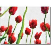 Trademark Global Michelle Calkins Red Tulips from Bottom Up III Canvas Art, 18 x 24