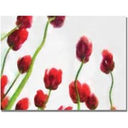 Trademark Global Michelle Calkins Red Tulips from Bottom Up IV Canvas Art, 18 x 24