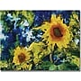 "Trademark Global Michelle Calkins ""Sunflowers"" Canvas Arts"