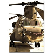 "Trademark Global MCat ""Chinook"" Canvas Arts"