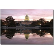 "Trademark Global MCat ""Necessity of Reflection"" Canvas Arts"