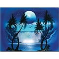Trademark Global Conrad in.Moon Over the Waterfall Iin. Canvas Art, 18in. x 24in.
