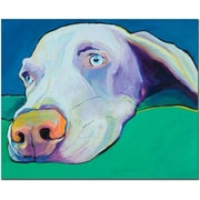 Trademark Global Pat Saunders White Fritz Canvas Art, 14 x 19
