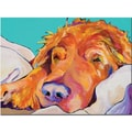 Trademark Global Pat Saunders White in.Snoozer Kingin. Canvas Arts