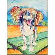 Trademark Global Pat Saunders White Mango Salsa Canvas Art, 47 x 35