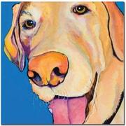 Trademark Global Pat Saunders White Rex Canvas Art, 35 x 35