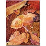 """Trademark Global Pat Saunders White """"Golden Koi"""" Canvas Art, 32"""" x 24"""""""