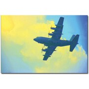 Trademark Global Patty Tuggle Blue Daze Canvas Art, 16 x 24