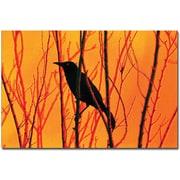 "Trademark Global Patty Tuggle ""Blackbird Dreams"" Canvas Art, 14"" x 19"""