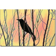 "Trademark Global Patty Tuggle ""Blackbird Dreams I"" Canvas Art, 16"" x 24"""
