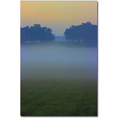 Trademark Global Patty Tuggle in.Between Treesin. Canvas Art, 24in. x 16in.