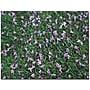 Trademark Global Patty Tuggle Fallen Flowers Canvas Art,