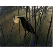 "Trademark Global Patty Tuggle ""Nevermore Night and Day"" Canvas Arts"