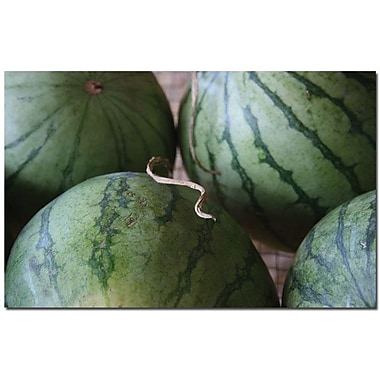 Trademark Global Patty Tuggle in.Summer Watermelonsin. Canvas Art, 16in. x 24in.
