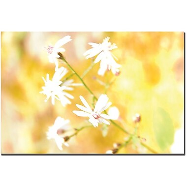Trademark Global Tammy Davison in.Flowersin. Canvas Art, 16in. x 24in.