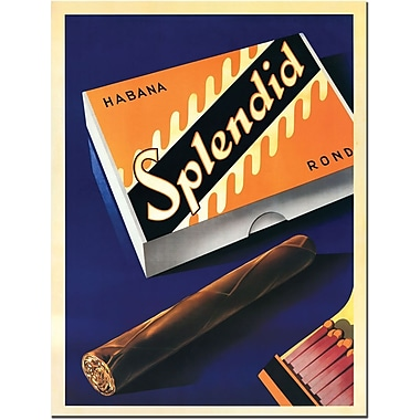 Trademark Global in.Splendidin. Canvas Art, 19in. x 14in.