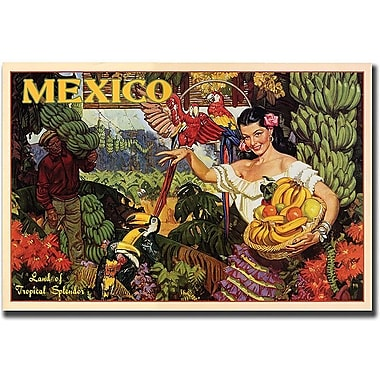 Trademark Global in.Mexicoin. Canvas Art, 18in. x 24in.