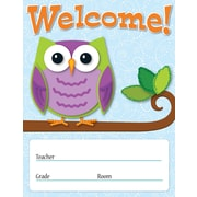 Carson-Dellosa Colorful Owls Welcome Chart