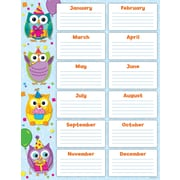 Carson-Dellosa Colorful Owls Birthday Chart