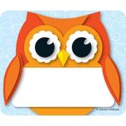 Carson-Dellosa Colorful Owl, Name Tags, 40 Name Tagss