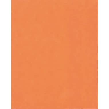 Hilroy Fluorescent Colour Bristol Board, 22