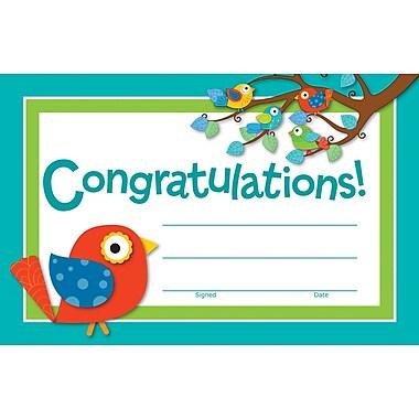 Carson-Dellosa Boho Birds Recognition Award