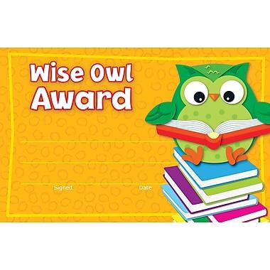 Carson-Dellosa Wise Owl Recognition Award