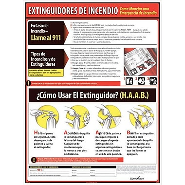 ComplyRight Fire Extinguisher Poster, Spanish