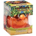 Ovation Dark Chocolate Orange Break a Parts, 6.17 oz. Box