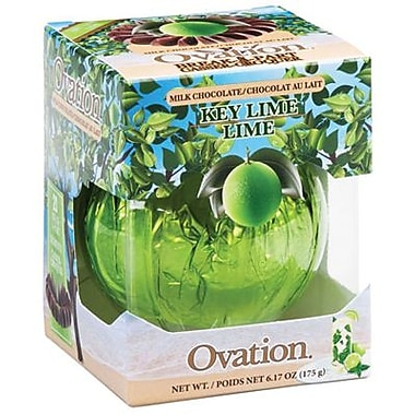 Ovation Milk Chocolate Key Lime Break a Parts, 6.17 oz. Box