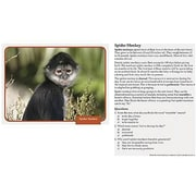 Edupress® Reading Comprehension Science Card, Rain Forest