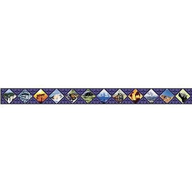 North Star Teacher Resources® 3rd - 12th Grades Straight Bulletin Board Border, Global Warming