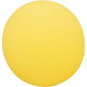 "Martin Sports® Foam Ball, 8 1/2""(Dia), Yellow"
