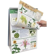 New Path Learning® Flip Chart Set, Life Science